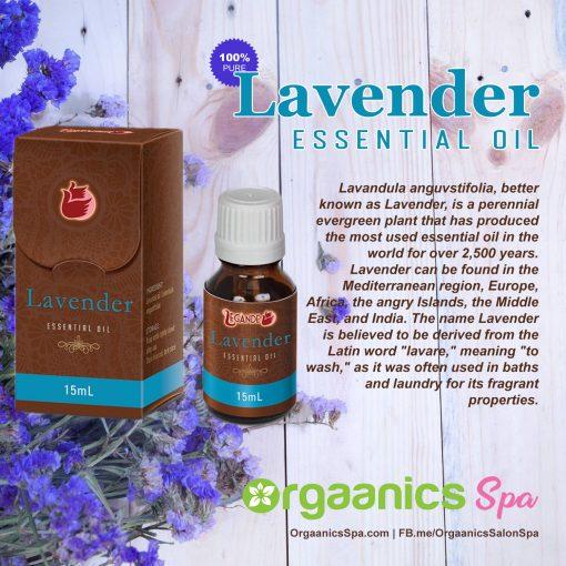 Legánde Lavender Essential Oil
