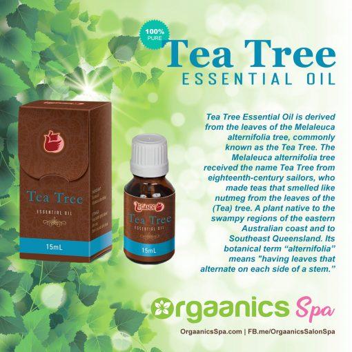 Legánde Tea Tree Essential Oil